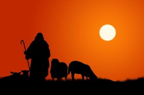 @Glowimages: Silhouette Of Shepherd And Sheep