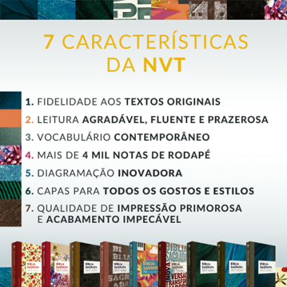 biblia-nvt-2